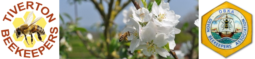 Tiverton Beekeepers
